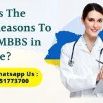 What is The Main Reasons To Study MBBS in Ukraine?